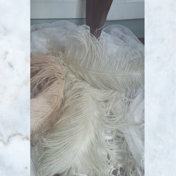 1920s ostrich feathers