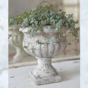 Jeanne d'Arc Living plant pot
