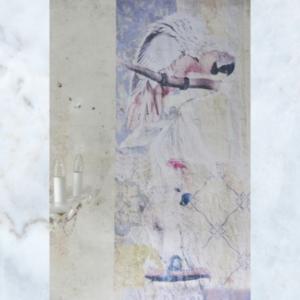 Jeanne d'Arc Living exotic parrots poster